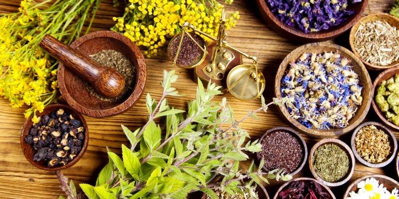 Naturopatía, el poder curativo de la naturaleza.